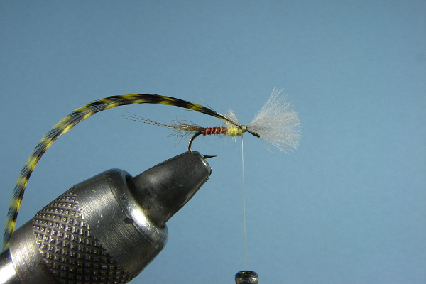Classic Salmon and Trout Flies of Europe and the Americas